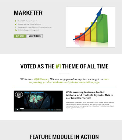 Marketer Page