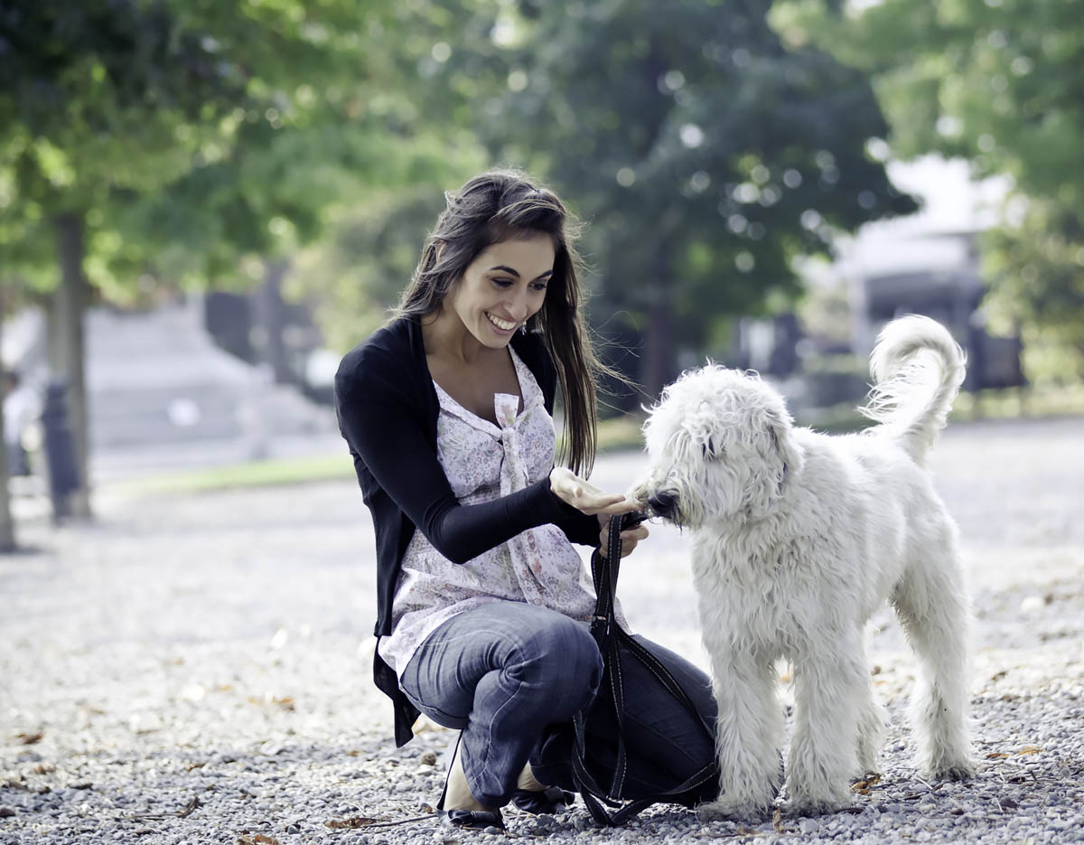 Young woman with a white dog
