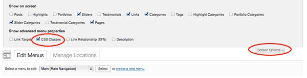 CSS classes screen options