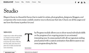 Elegant - Minimal Blog & Portfolio WordPress Theme
