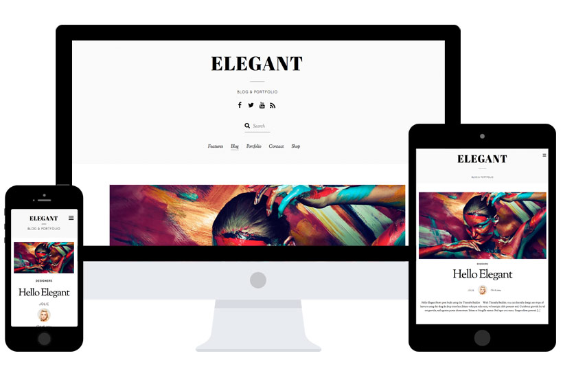 WordPress theme New Elegant Theme