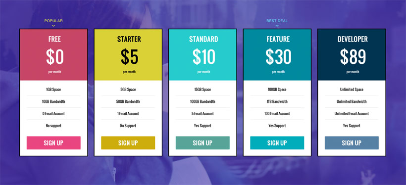 WordPress theme New Pricing Table Addon