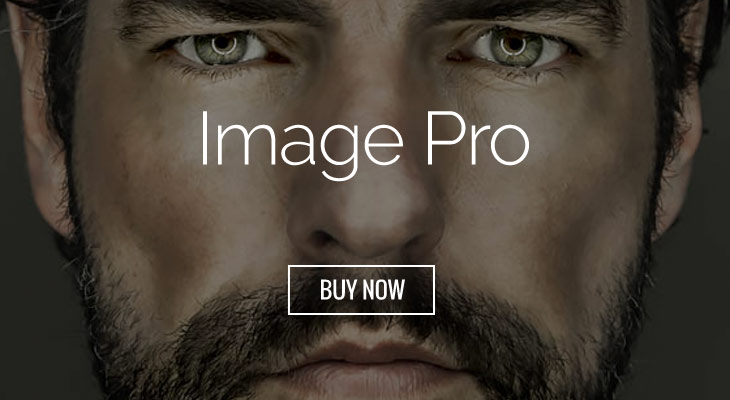 WordPress theme Beautify Your Images With Image Pro Addon