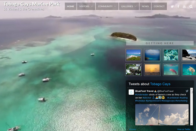 Tobago Cays Marine Park screenshot