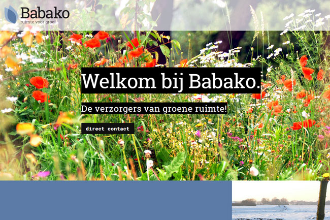 Babako screenshot
