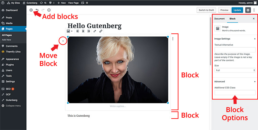 Gutenberg interface