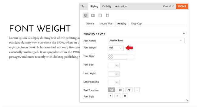 Google Font Weight