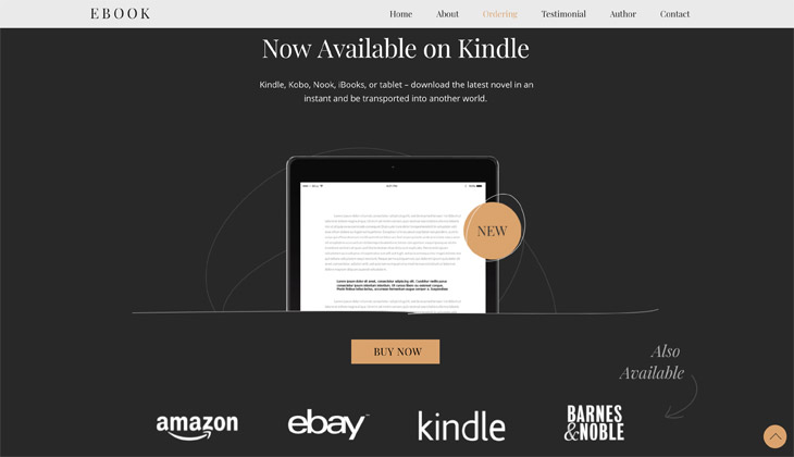 Themify Ultra eBook Skin Site