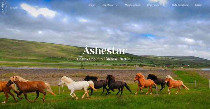 Áshestar - Icelandic Horseback Riding