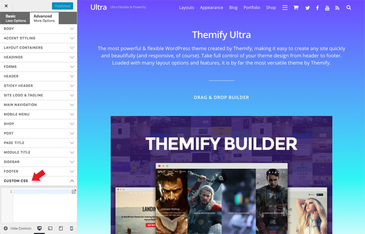 Themify Tutorial Customizer Panel