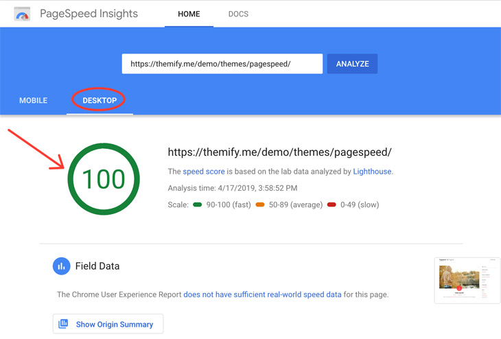 Themify Tutorial How to Score an A+ on Google PageSpeed Insights 100 percent pagespeed score
