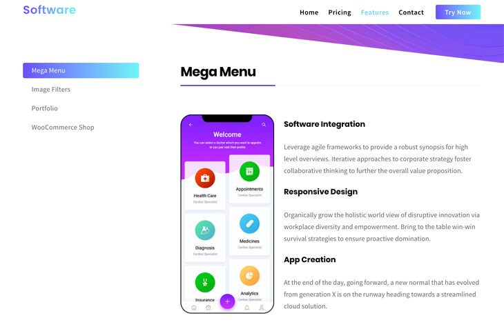 Themify Ultra Software Skin Features Page