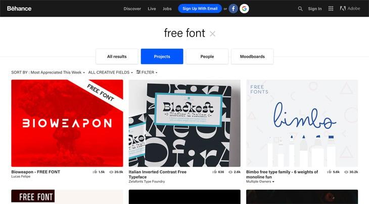 Behance Screenshot Themify Custom Fonts