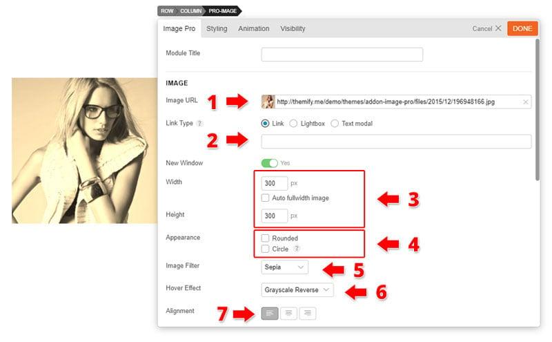 image-pro options