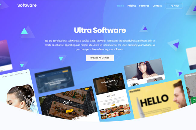 Ultra Software Skin WordPress Themify Ultra Theme