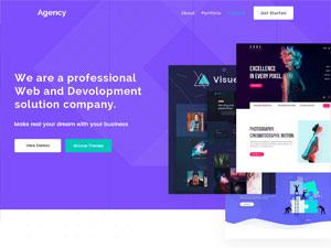 Pro Agency